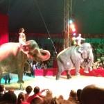 cirque (4) (800x600)