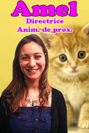 amel trombi